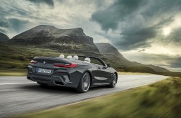 BMW 8 Series Convertible, 2019, rear, action