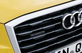 Audi Q2 2.0 TFSI quattro, 2017, grille