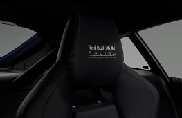 Aston Martin Vantage S Red Bull Racing seat detail