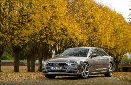 Audi A8 L, front static
