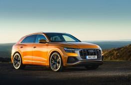 Audi Q8, front static