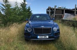 Bentley Bentayga Centenary Edition, 2019, nose