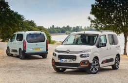 Citroen Berlingo, 2018, pair