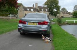 BMW 520d M Sport, rear static