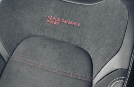 Performance Line seat stitching