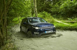 Land Rover Discovery Sport, off road