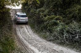 DS 7 Crossback E-Tense 4x4, 2019, rear, off road