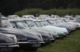 Citroen Collectors' Gathering, 2019, DS line up