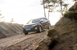 Ford Edge, 2016, off road