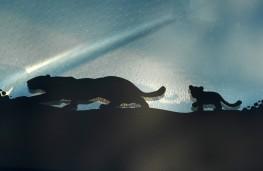 Jaguar E-Pace, 2017, cub graphic