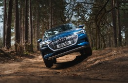 Audi e-tron, nose, off road