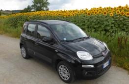 Fiat Panda, front static