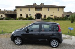 Fiat Panda, side hotel