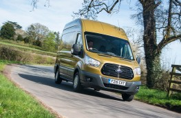 Ford Transit, Golden Transit