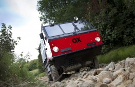 Global Vehicle Trust OX action