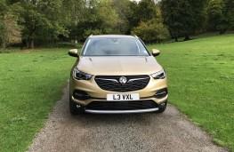 Vauxhall Grandland X, 2017, nose