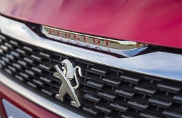 Peugeot 308 GTi, grille