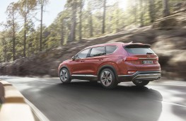 Hyundai Santa Fe 2018 rear action