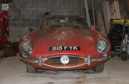 Jaguar E-Type found under hedge
