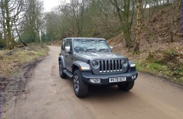 Jeep Wrangler 2.0 Overland 2DR, action