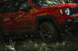 Jeep Renegade 4xe, 2020, off road, action