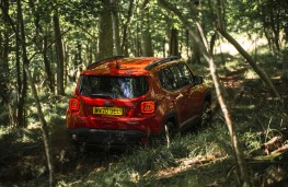 Jeep Renegade 4xe, 2020, off road, rear
