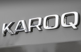 Skoda Karoq, 2018, badge