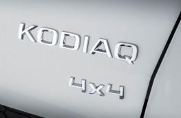 Skoda Kodiaq, 2016, badge