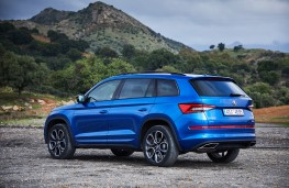 Skoda Kodiaq vRS, 2019, rear, static