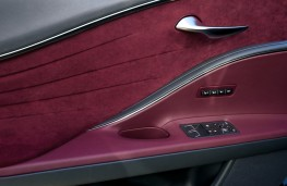 Lexus LC 500, 2017, door trim