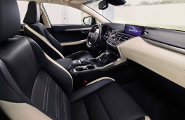 Lexus NX 300h Sport, 2018, interior