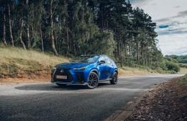 Lexus NX, 2021, front, static