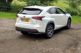 Lexus NX300h F Sport, rear static