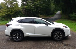 Lexus NX300h F Sport, side static