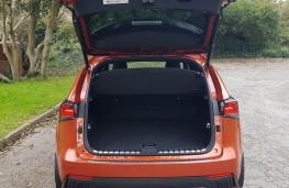 Lexus NX 300h F-Sport hybrid, tailgate