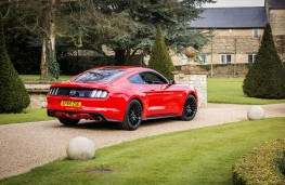 Ford Mustang Fastback, rear