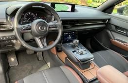 Mazda MX-30, 2020, interior