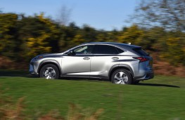 Lexus NX 300h, 2018, side, action