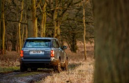 Range Rover P400e PHEV, 2018, off road, rear