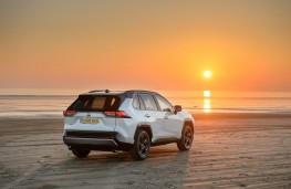 Toyota RAV4, 2019, rear, static