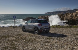 Citroen C4 Cactus Rip Curl, rear, beach