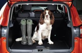 Renault Captur, dog in boot