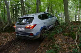 SsangYong Rexton, 2017, off road, mud, rear