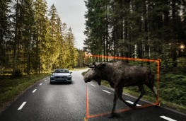 Volvo S90, large animal detection