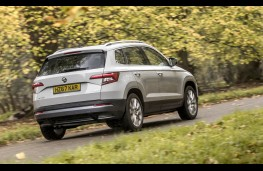 Skoda Karoq, rear action
