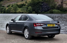 Skoda Superb, rear static