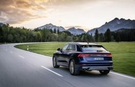 Audi SQ8, 2020, rear