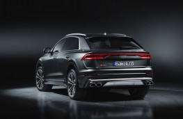Audi SQ8, 2019, rear, static