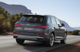 Audi SQ7 TDI, 2019, rear