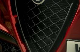 Alfa Romeo Stelvio Quadrifoglio, 2020, grille
